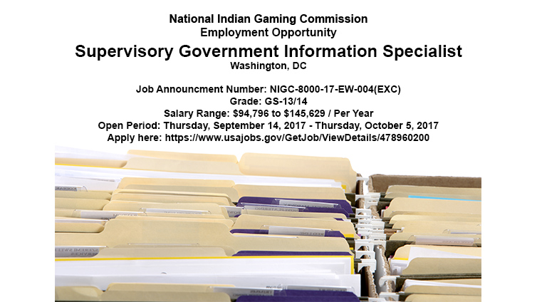 Employment Opportunity: Supervisory Government Information Specialist